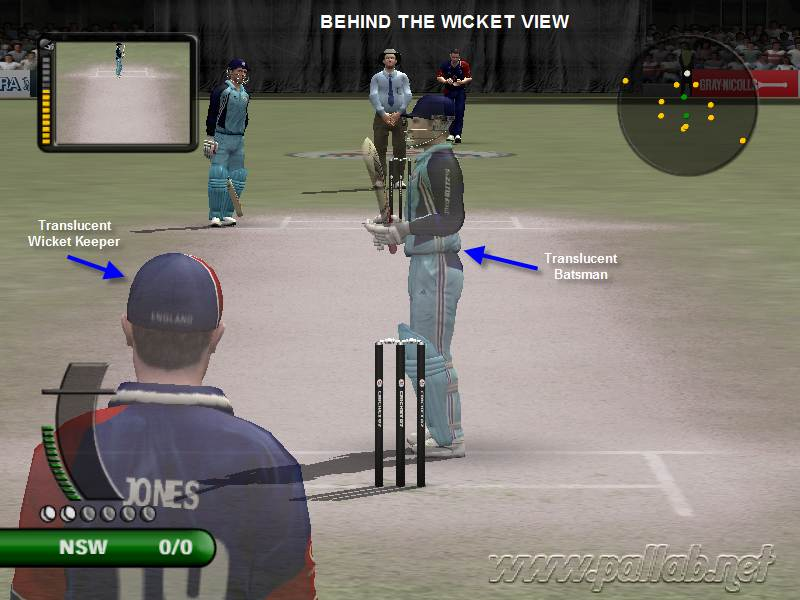 Behind the Wicket View